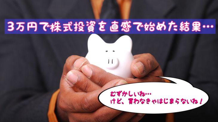3万円で株式投資を直観で始めた結果・・・なんと!
